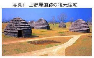 上野原遺跡.JPG